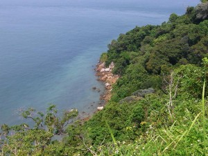 Tanjung Tuan coastal hill forest