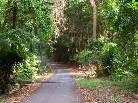 Tanjung tuan road
