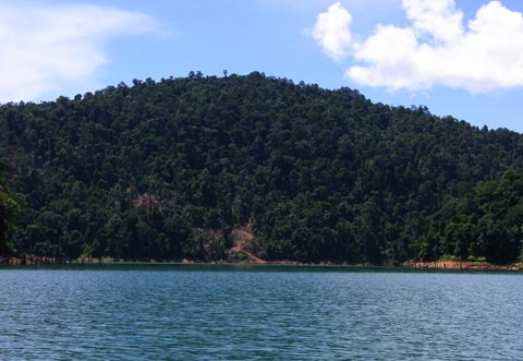 Logging at Kenyir Lake