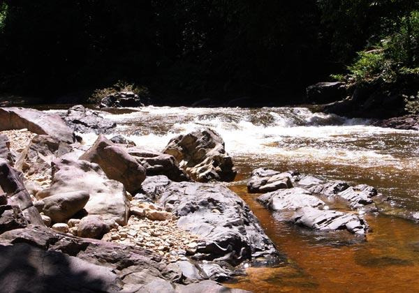 Sungai Petang rapids