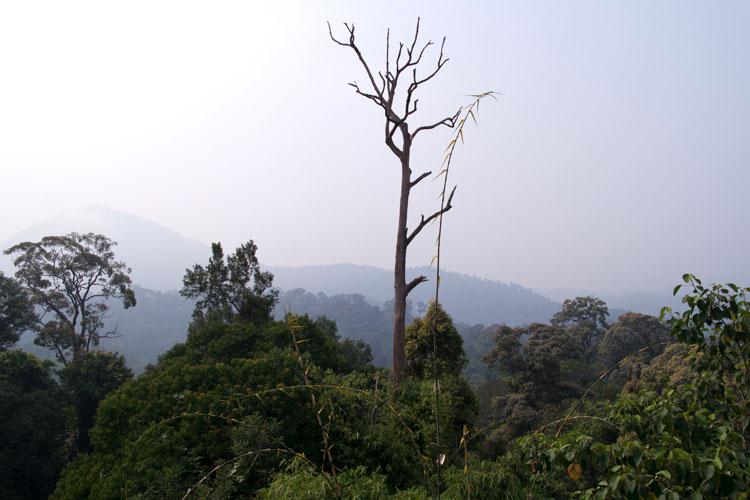 Bukit Seraya view