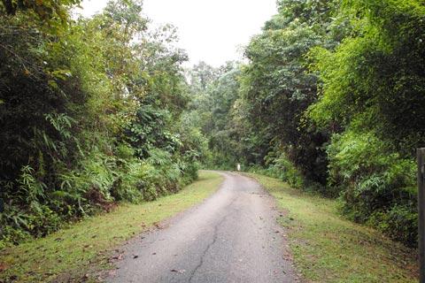 Road to Kuala Juram