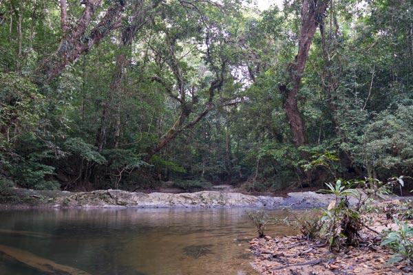 Sungai Relau