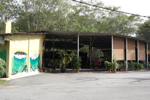 KSNP aquarium