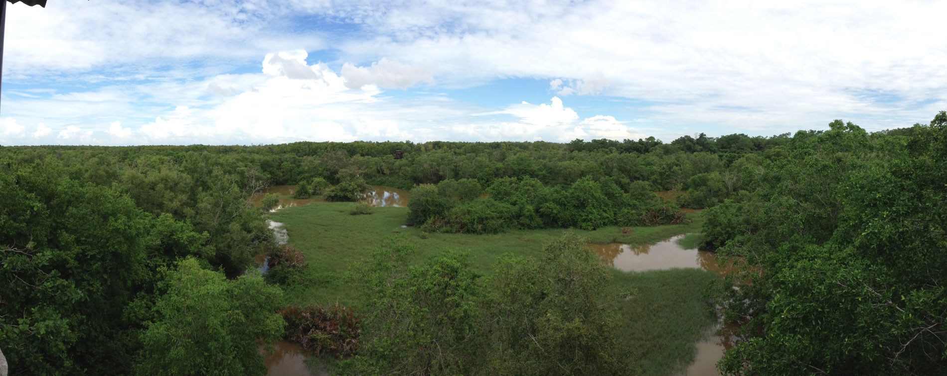 Kuala Selangor Nature Park overview