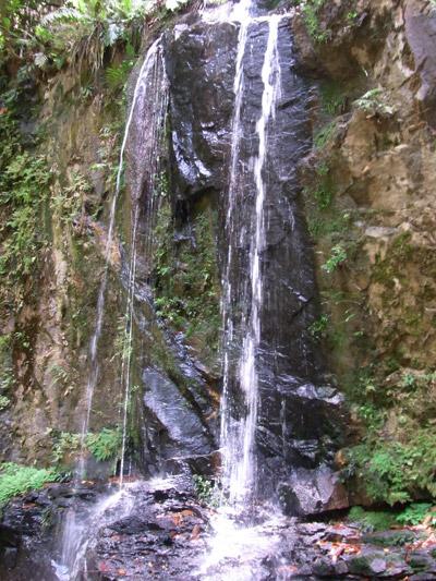 Ayer Hitam waterfall