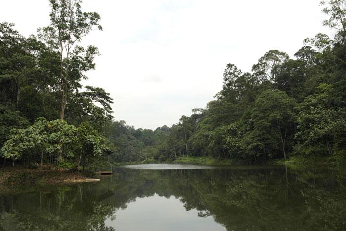 Sungai Air Kuning dam