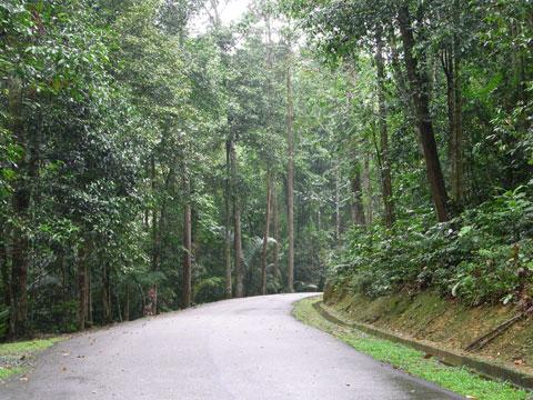 TBNSA road