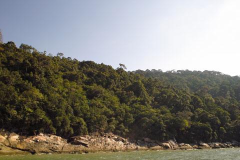 Original Penang Island