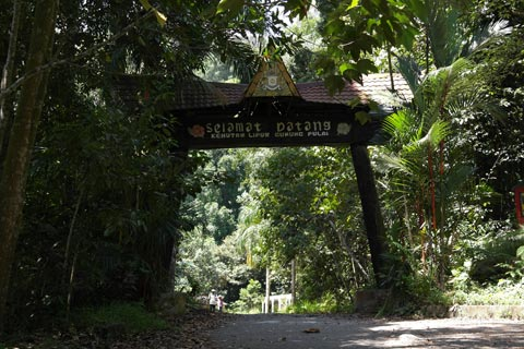 Gunung Pulai Recreational Forest