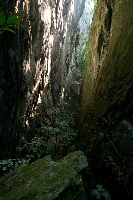Limestone gorge