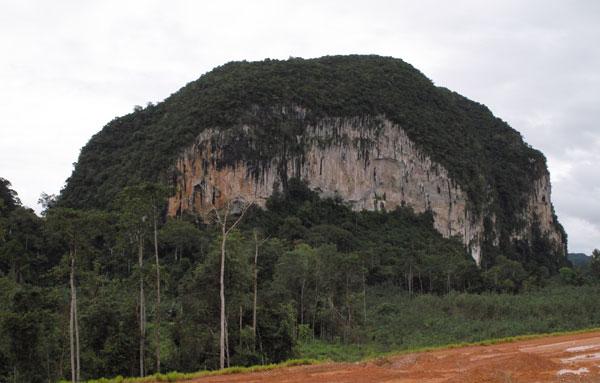 Merapoh limestone hill