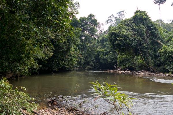 Tanum river