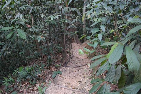 Merawan Trail