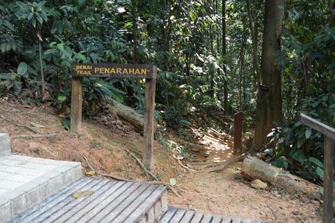 Penarahan Trail