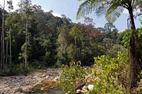 Selai River scenery