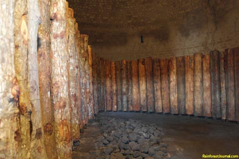 mangrove logs inside kiln