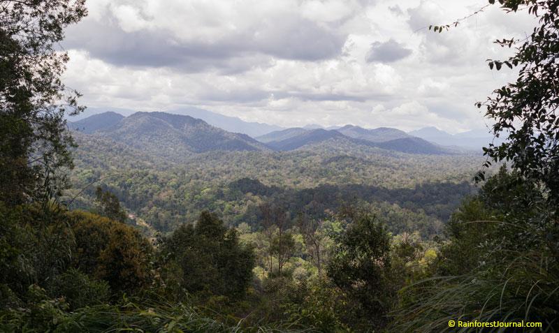 bukit teresek view