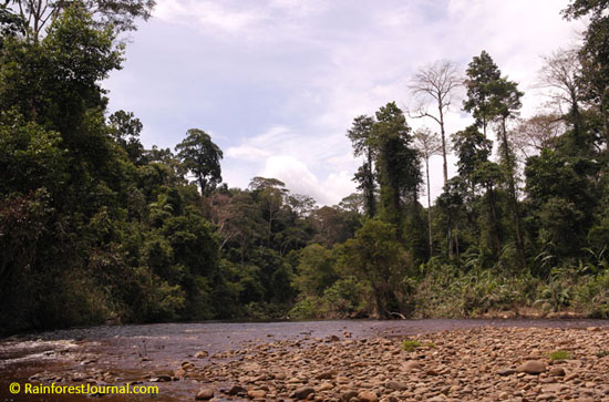 tahan river scene