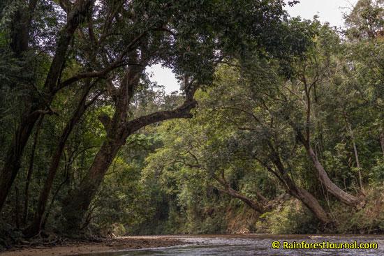 tahan river scenery