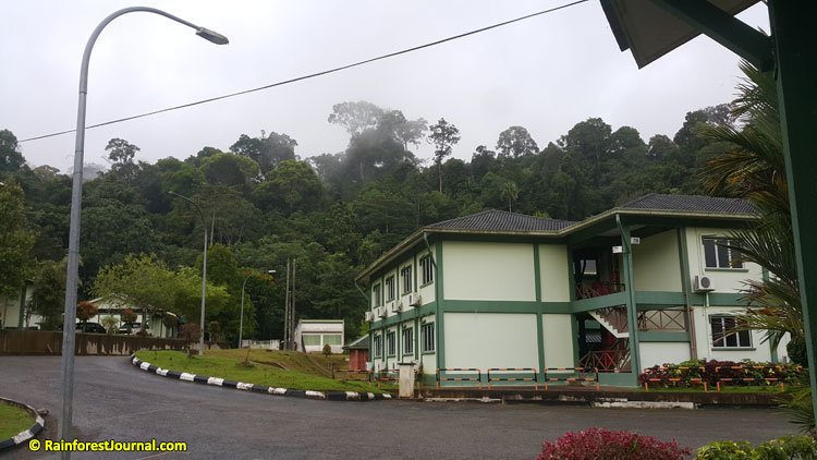bukit rengit hq buildings