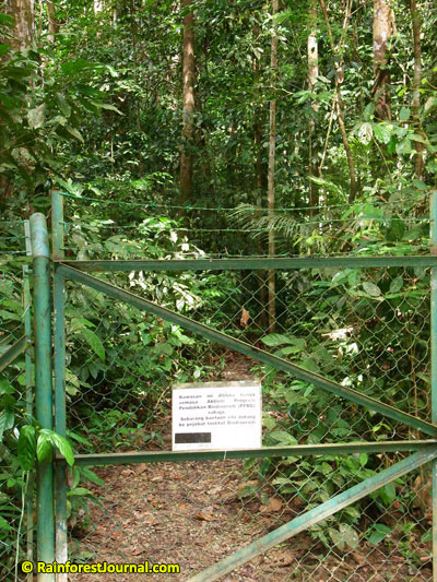 bukit rengit trail entrance