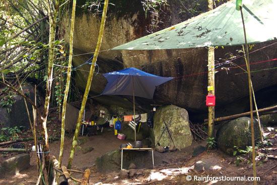 gua kambing